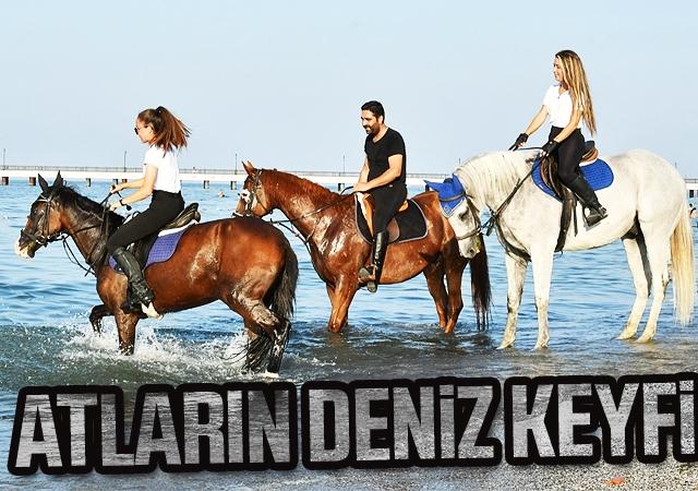 Atların deniz keyfi